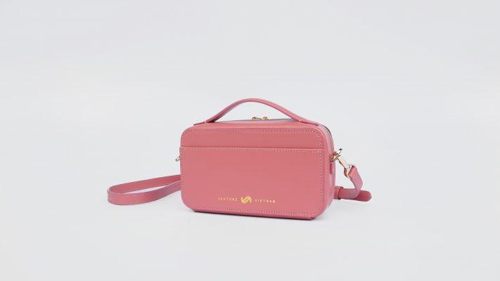 Mẫu túi Clau Box màu hồng trong Clau Collection 2021 tại Jaxtone Vietnam